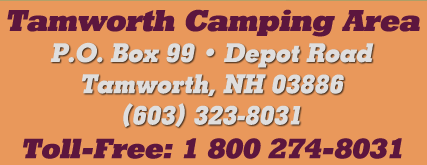 Tamworth Camping Area P.O. Box 99 Depot Road Tamworth NH 03886 (603) 323-8031